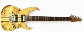 Raven ISP 2000 EN gitara elektryczna NTB