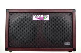 Purple Chili PC-212 Celestion NEO Speakers 120W Kolumna Gitarowa