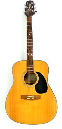 Takamine G 240 Gitara Akustyczna (1)